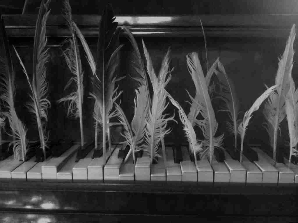 feather piano 2